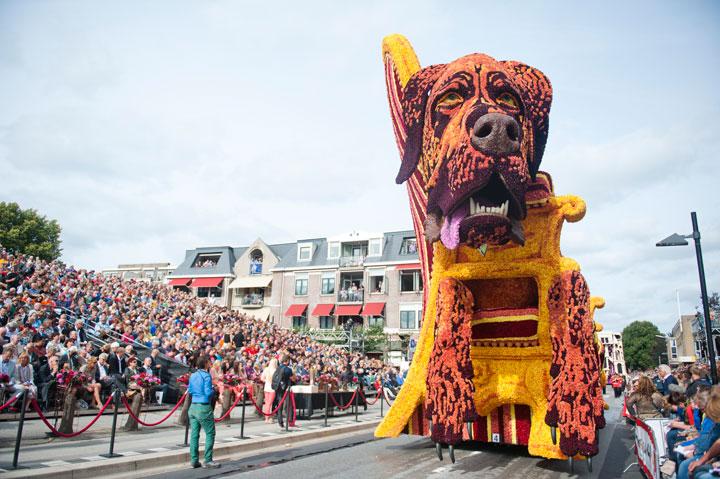 les-incroyables-sculptures-florales-realisees-pour-la-zundert-flower-parade-20131