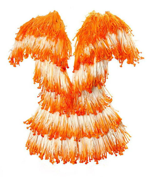 habillez-vous-bio-et-ecolo-avec-ces-incroyables-robes-creees-a-partir-de-legumes13