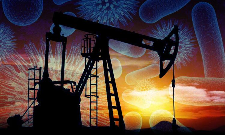 le-petrole-sera-peut-etre-bientot-remplace-par-des-bacteries-genetiquement-modifiees-une-750x450