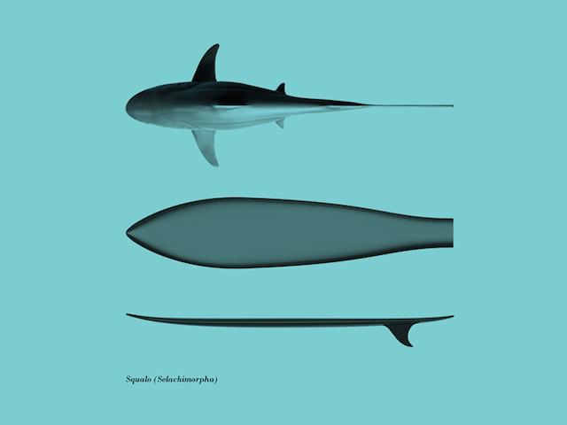 Fashions-Surfboards-by-Giulio-Iacchetti-7