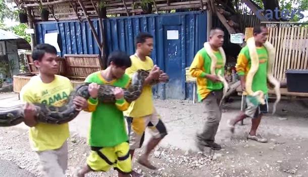 Snake-Massage-4