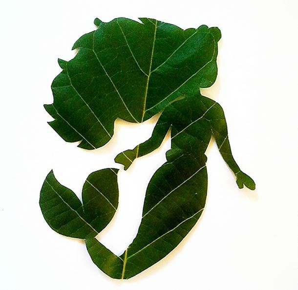 roy-mallari-green-illustrations-made-of-leafs-8