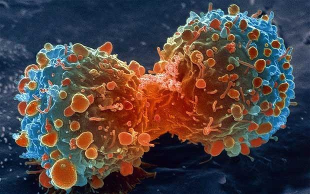 cancer-mpi