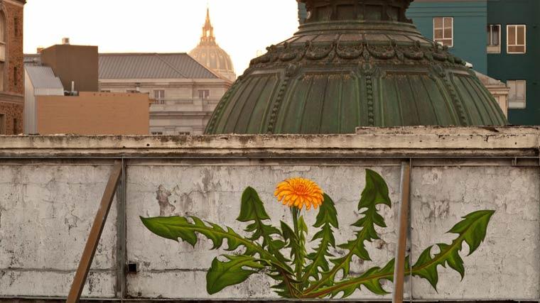 WEEDS-street-art-by-mona-caron-2