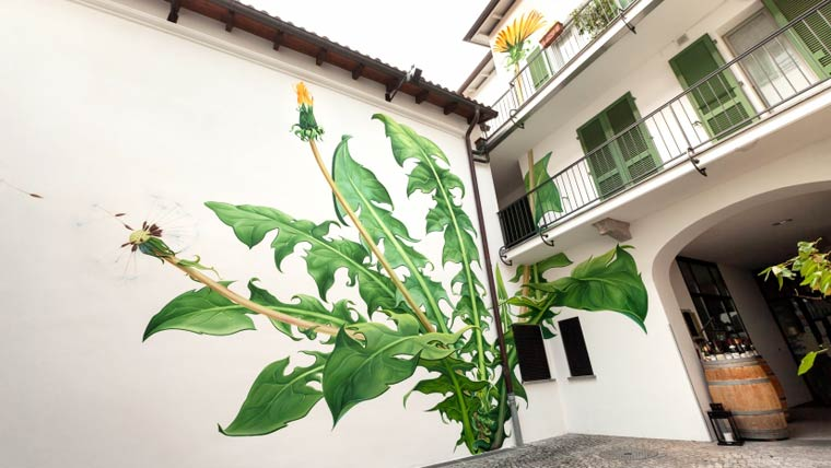 WEEDS-street-art-by-mona-caron-4