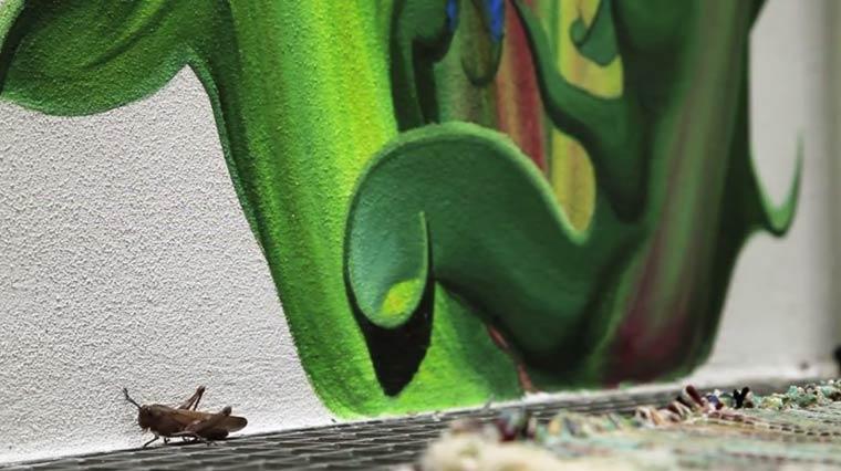 WEEDS-street-art-by-mona-caron-6