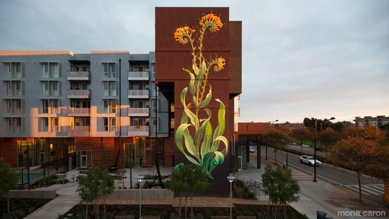 WEEDS-street-art-by-mona-caron-9